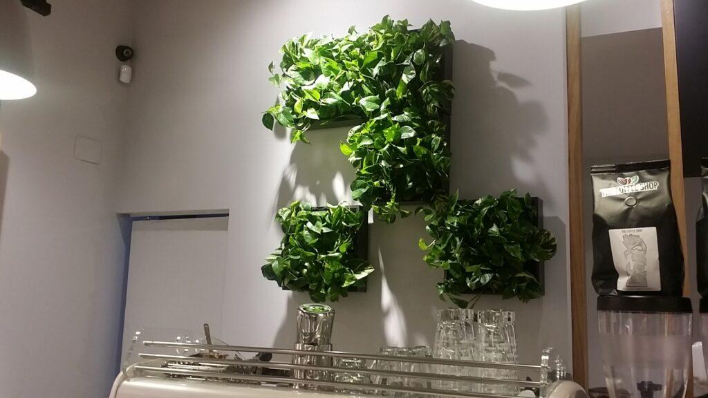 gradina-verticala-cafenea-1