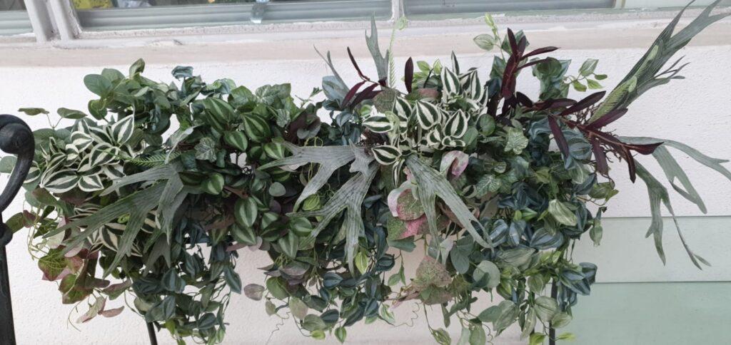 plante-artificiale-cafenea